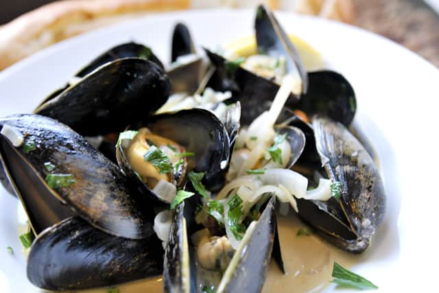 Steamed Mussels in White Wine Broth Recipe