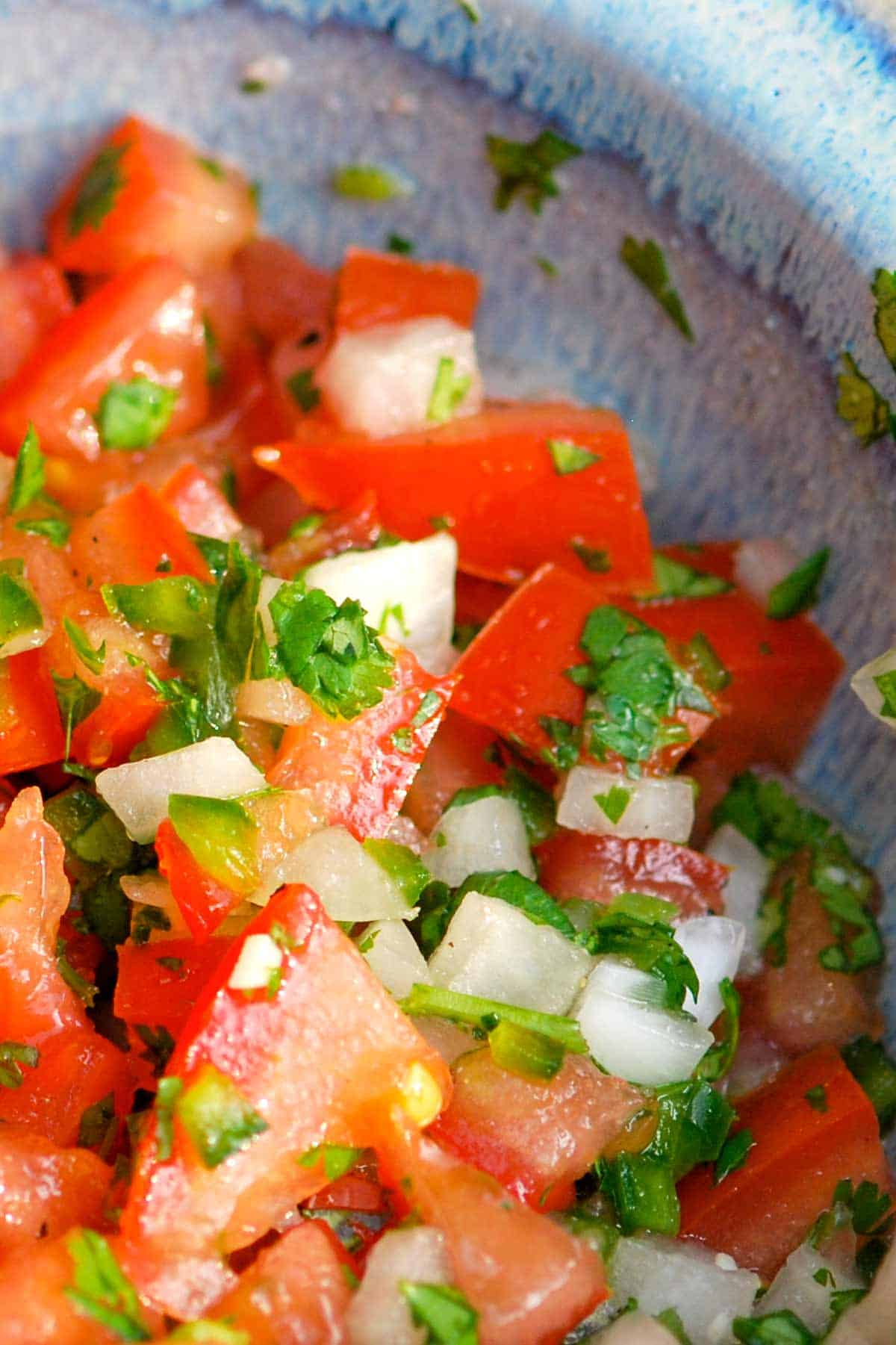 How to Make the Best Pico de Gallo Salsa // You'll love this easy pico de gallo recipe! With just 6 simple ingredients you'll have fresh, zesty, delicious tomato salsa in no time.
