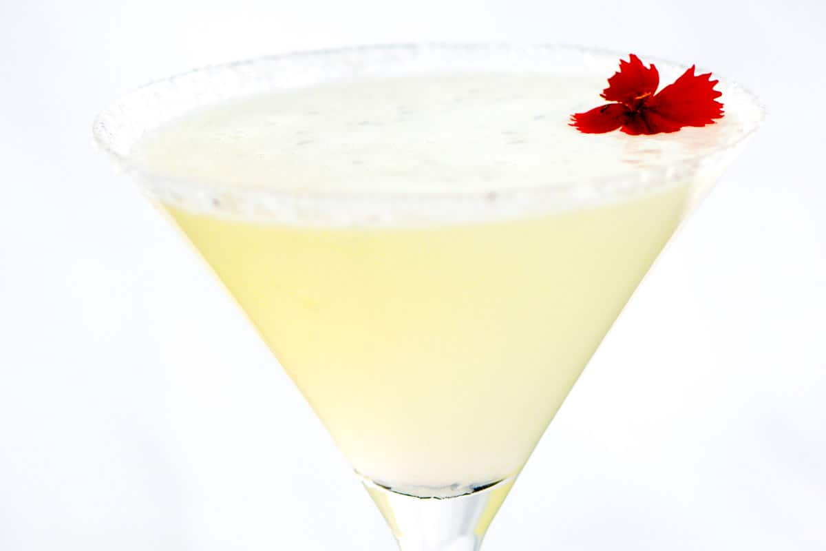 Easy Lemon Drop Martini Cocktail