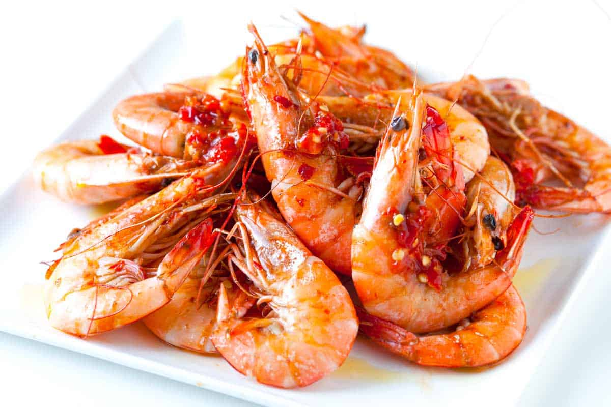 shrimp dating site