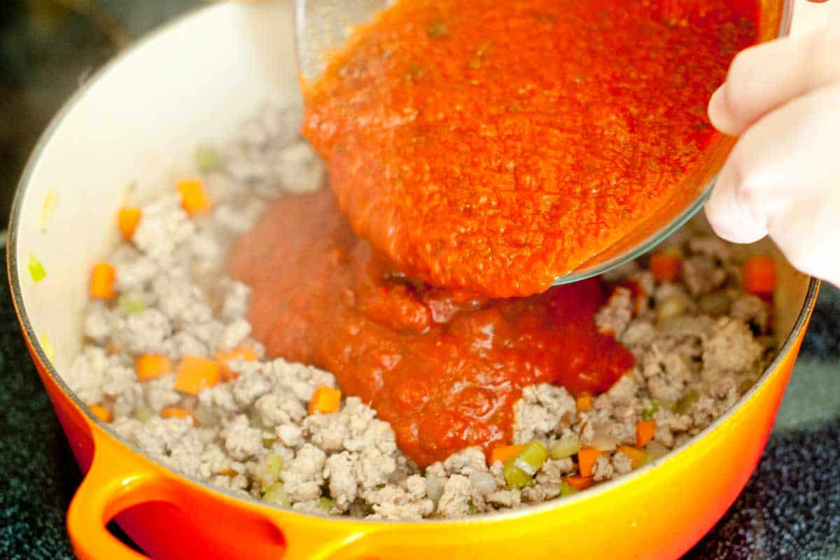 Easy, 30 Minute Chicken Ragu Recipe