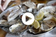 Bubbles-and-Oysters---King-Street-Alexandria