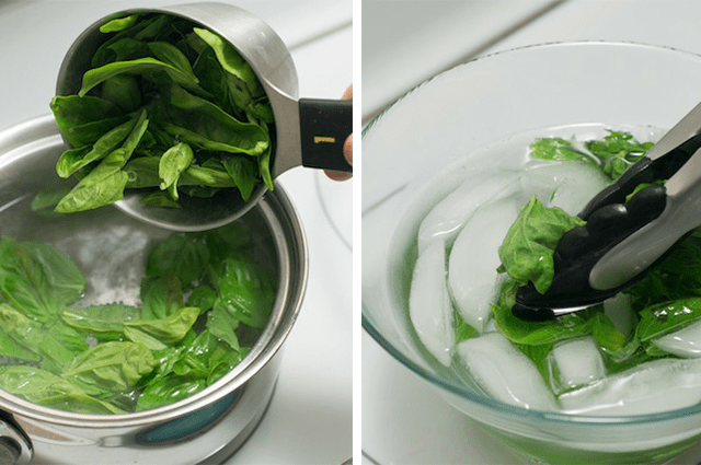 Blanching-Basil---Basil-Pesto-