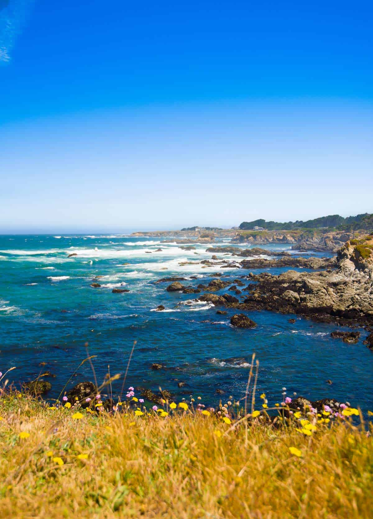Traveling to Mendocino County, California