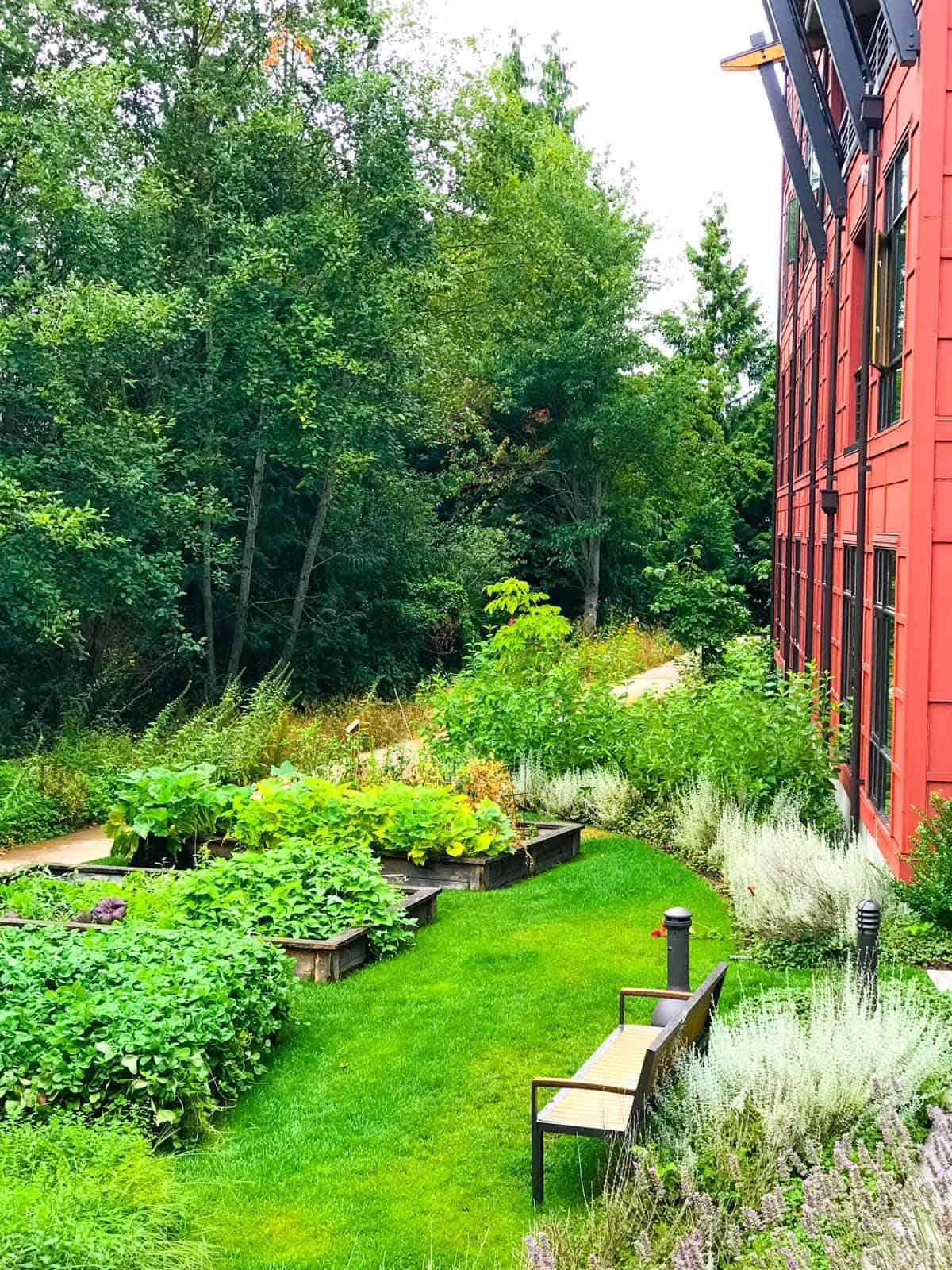 Our room at Cedarbrook lodge was on the second floor overlooked the Chef's vegetable and herb garden.