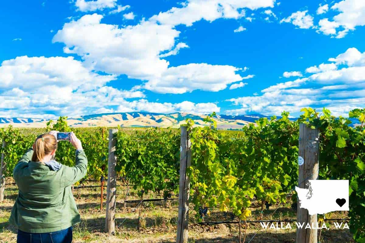 A Perfect Weekend in Walla Walla, Washington