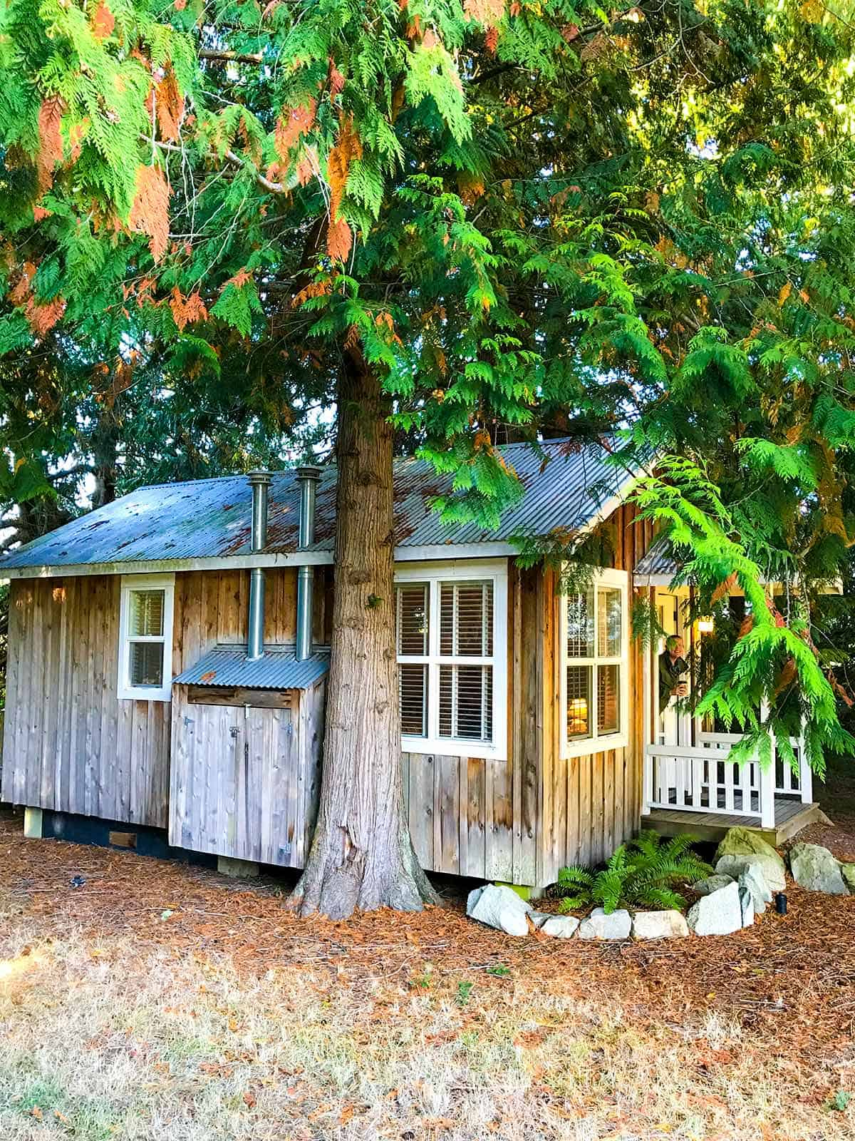 Our Cottage at Lopez Farm Cottages -- We loved it!