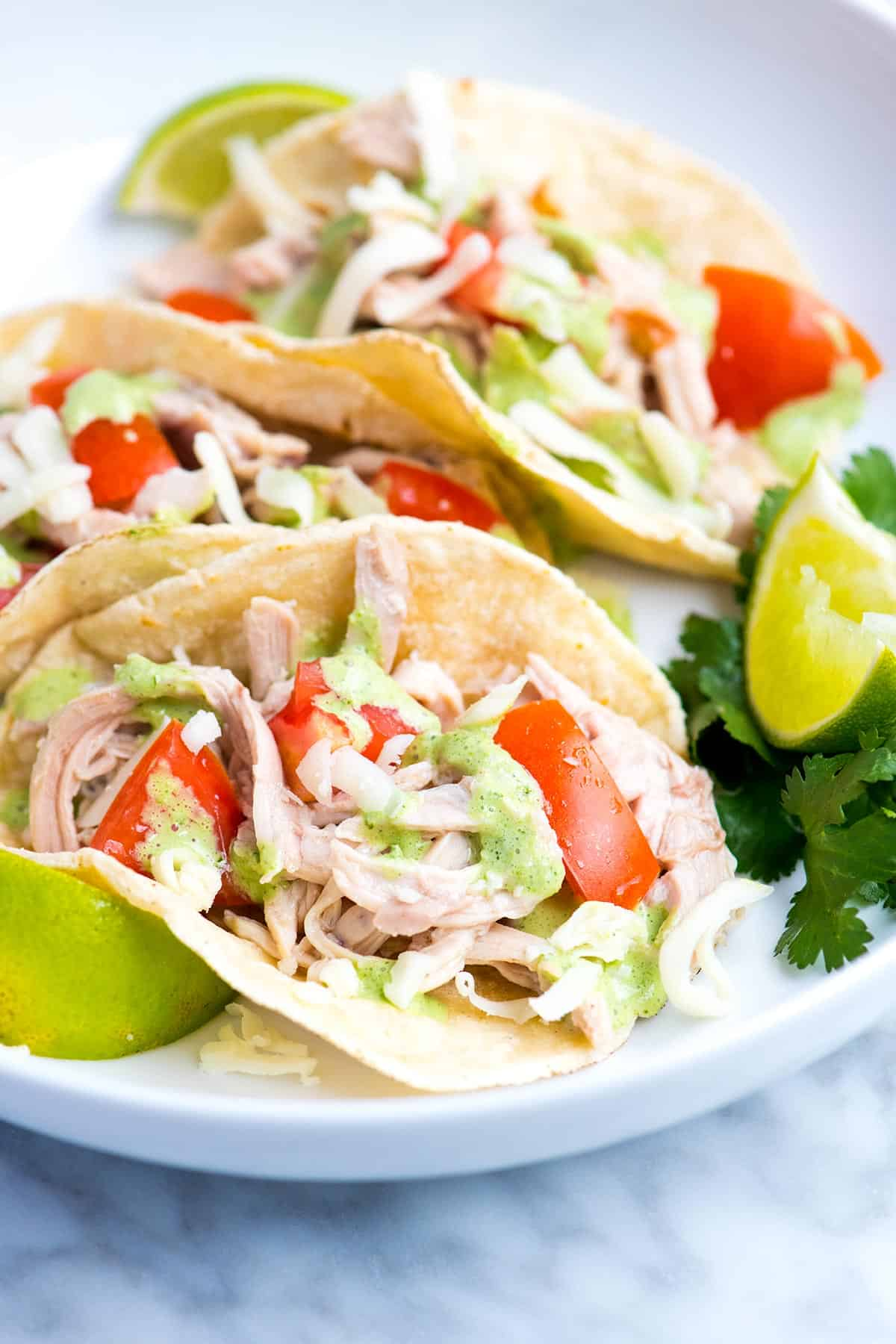 This easy shredded chicken tacos recipe is full of flavor thanks to well seasoned chicken and a bright and creamy cilantro sauce.