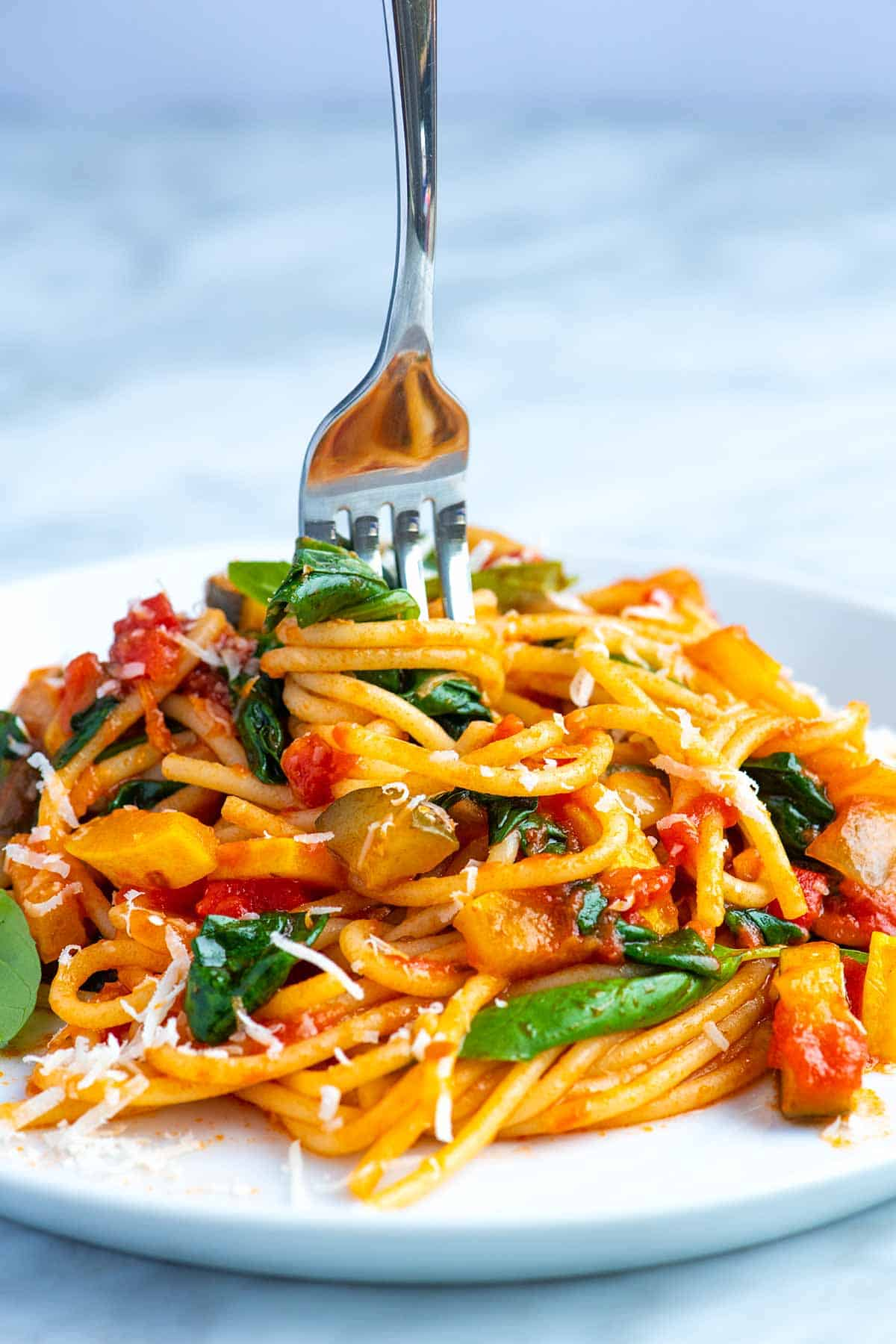 Fresh Vegetable Spaghetti Recipe