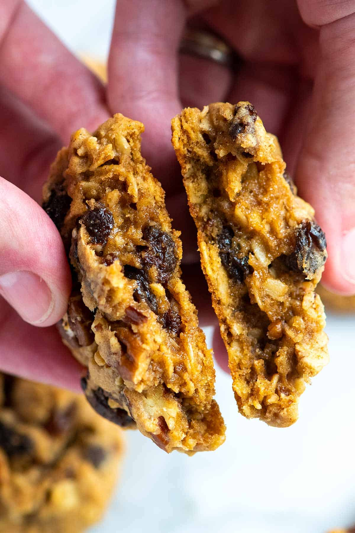 Extra Easy Oatmeal Cookies Recipe -- Vegan Alternative Included!
