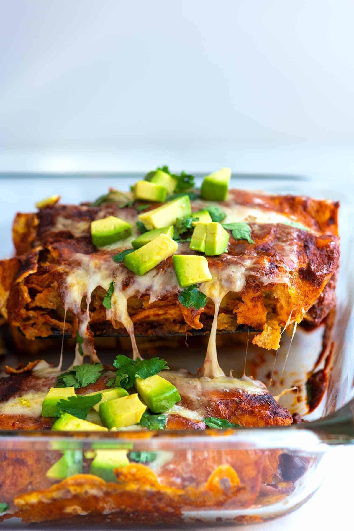 Serving chicken enchiladas with red sauce