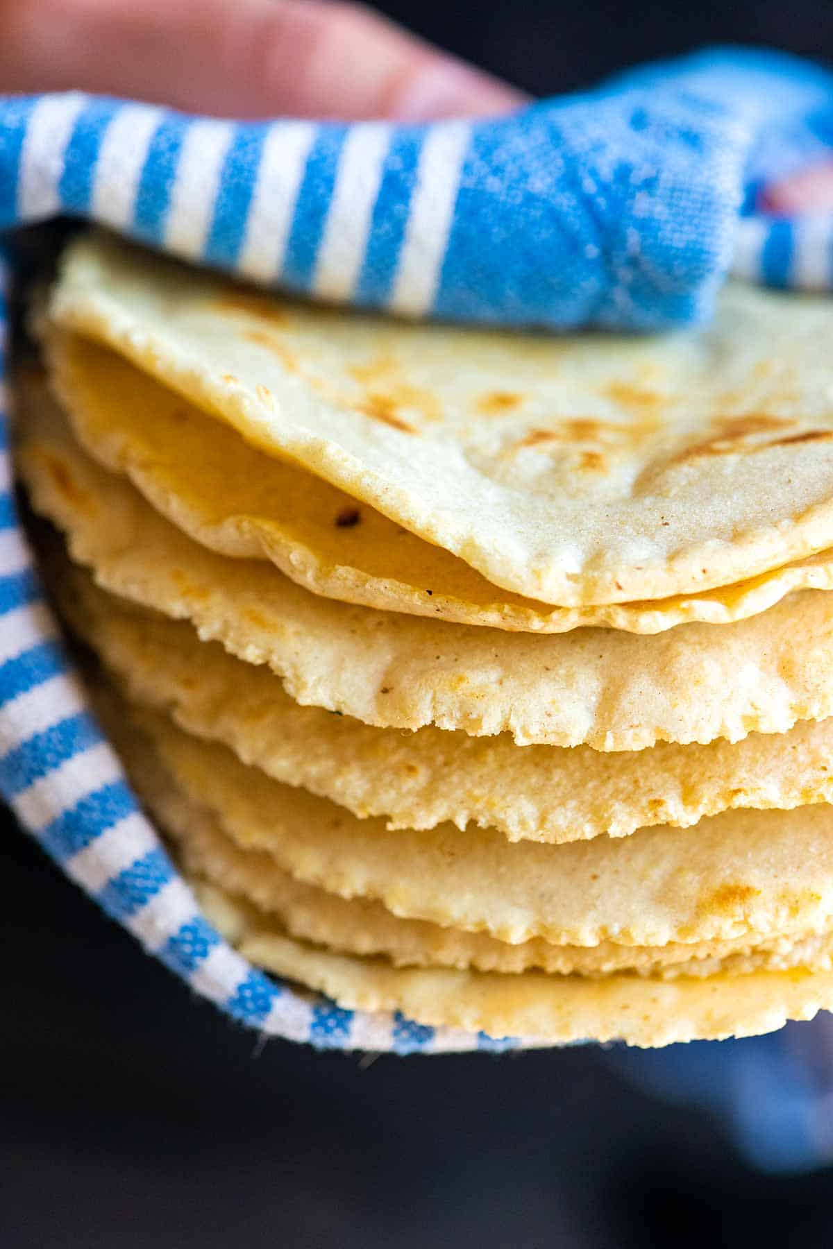 A stack of warm, freshly cooked corn tortillas