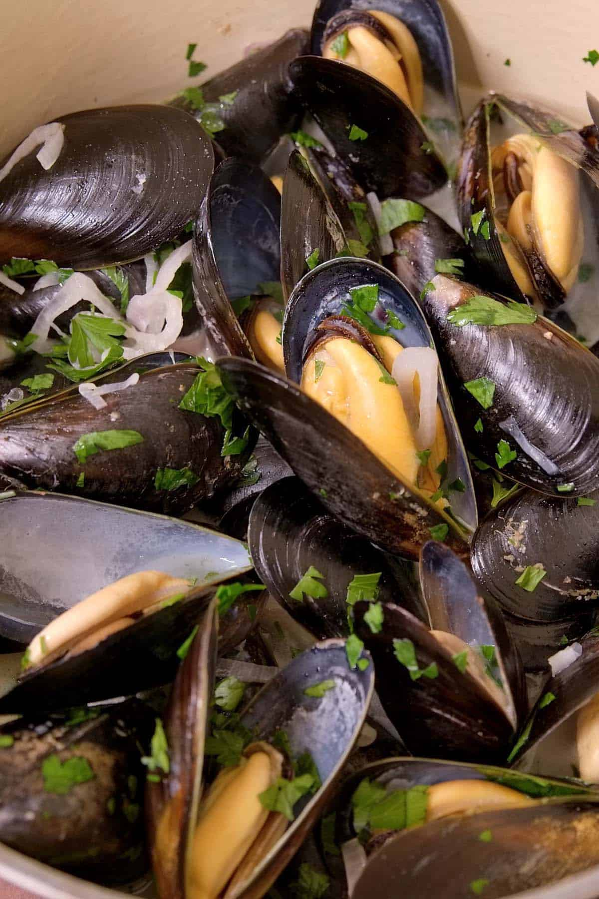 Steamed Mussels with shallots, garlic, parsley and a white wine broth